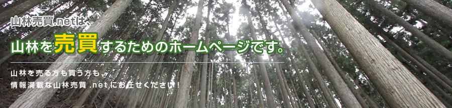 神奈川 山 購入